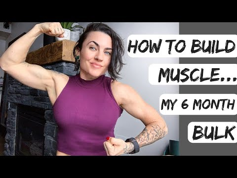 6 MONTH BULKING PROGRAM   Fitness Update   The TRUTH about building muscle