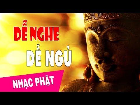 Nghe Câu Nào Thấu Tim Câu Đấy - Nhạc Phật Giáo Hay và Ý Nghĩa Dễ Nghe Dễ Ngủ