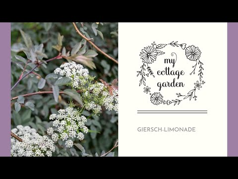 my cottage garden meine methode gegen giersch youtube. Black Bedroom Furniture Sets. Home Design Ideas