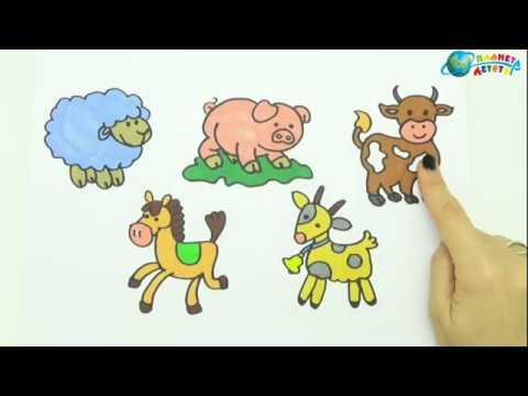 Рисование и раскраски для малышей - YouTube