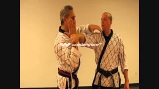HAPKIDO  White belt