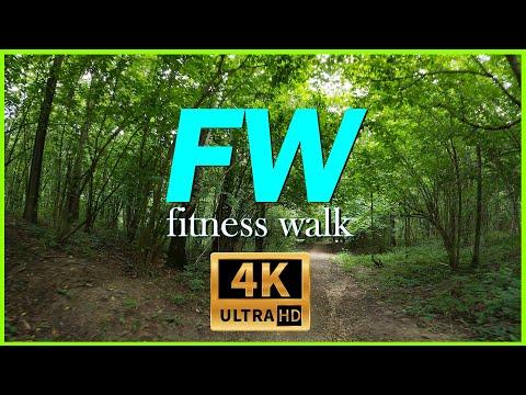 04. Walk in the Park to sports music 12 min / Прогулка по парку под спортивную музыку