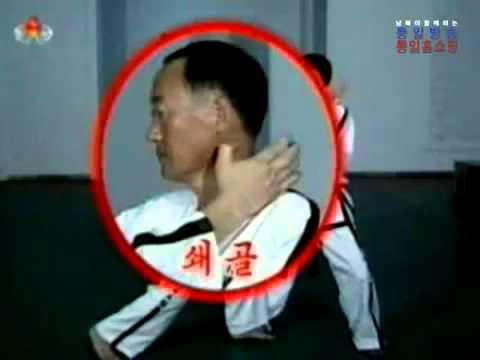 North Korea  Taekwon Do