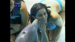 Laura Borlini / Hilo Dental / Colaless
