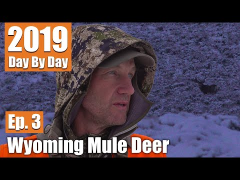 I Might Regret These Decisions | 2019 Wyoming Mule Deer (Ep. 3)