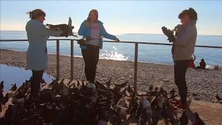 🔔Прогулка по Лазаревскому Сочи море Сочи пляж Морская звезда Багратион пляж Сочи 2020