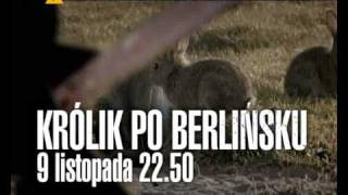 Królik po berlińsku (TVP1, 9 listopada, godz. 22.50)