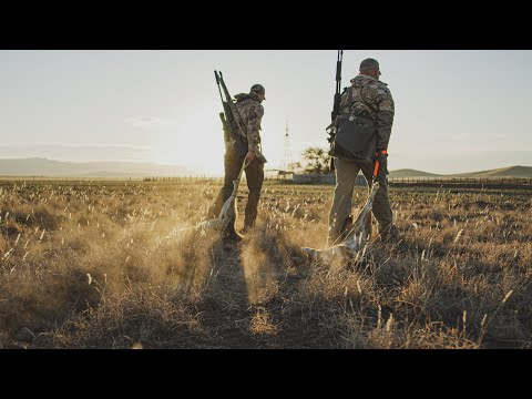 Desert Coyote Hunting | Arizona Part I | The Last Stand S2:E5