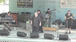 A Ton of Blues Live @ The 20th Annual Onset Blues Festival 8/4/12