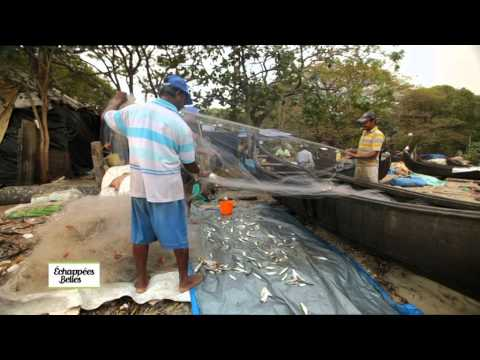 L'Inde : Kerala - Echappées belles thumbnail