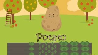 Детское обучение  Познавательное видео для Детей