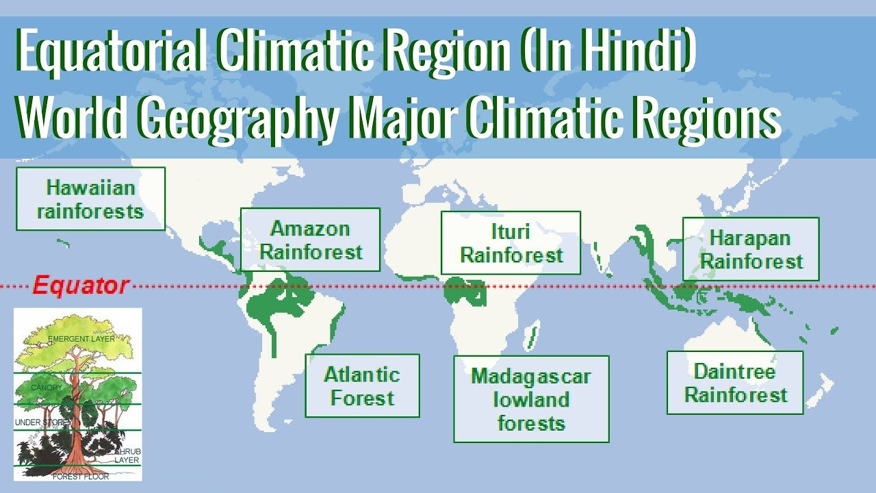 Map Of Asia Equator.Equatorial Climatic Region World Geography Major Climatic Regions In Hindi
