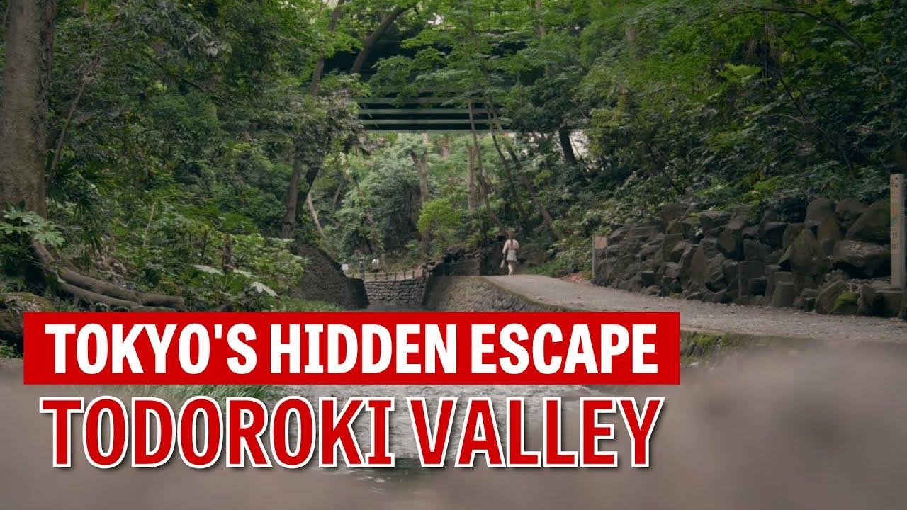Todoroki Valley—Tokyo's hidden escape