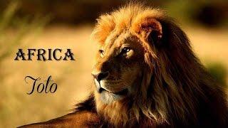Africa Toto (TRADUÇÃO) HD (Lyrics Video)