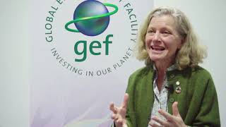 Interview with Emma Howard Boyd. Chair of UK Environment Agency, and GCA Commissioner