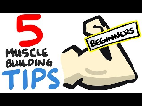 5 Muscle Building Tips For BEGINNERS