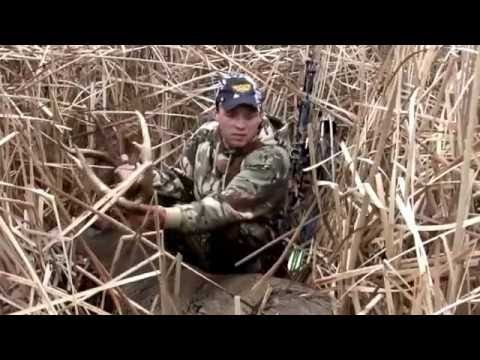 Top 5 - BIGGEST WILD BUCKS SHOT ON VIDEO (compilation)