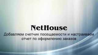 Nethouse. Добавление счетчика Яндекс Метрики и отслеживание заказов с помощью целей