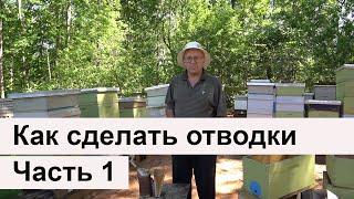 Пасека #5 Как сделать пчелиные отводки для продажи? Часть 1