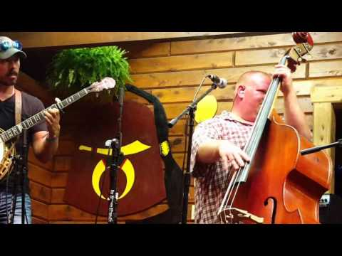 Dale Ann Bradley Band / Our Last Goodbye