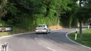 Rally San Marino Show  2014 ( Show & Pure Sound [HD] )