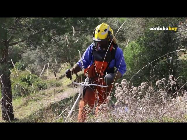 El Infoca lucha ya contra el fuego del verano