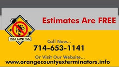 Termite Inspection Los angeles,  213-928-7849  Termite Inspection LA, termite exterminator LA