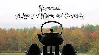 Wonderwell: The Next 100 Years