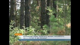 Минприроды может запретить экспорт российского леса в Китай.