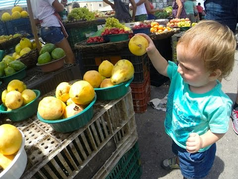 Brazilian Market - Family Travel with Small Kids