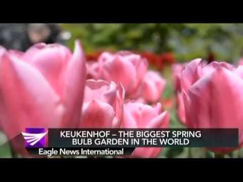 Keukenhof   The Biggest Spring Bulb Garden In The World