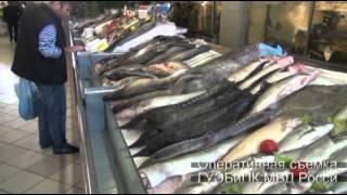 видео: Браконьерская осетрина на Дорогомиловском рынке