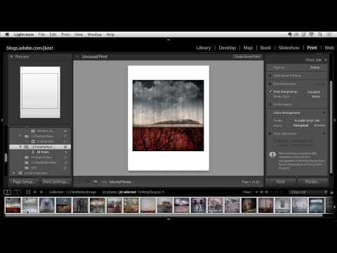 Lightroom 5: Print the Perfect Image