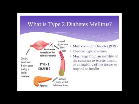 pathophysiology-of-diabetes