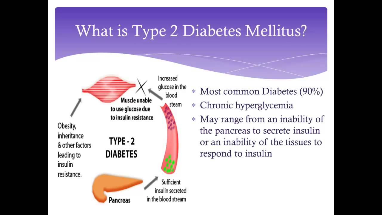 Pathophysiology of Diabetes - YouTube