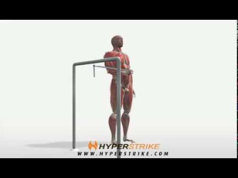 Exercise Videos- Band Shoulder Internal Rotation -- Standing