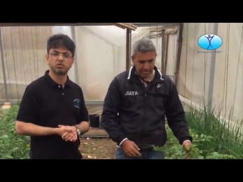 HF Palestine Agriculture Projects