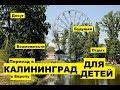 Калининград для детей: досуг, возможности, будущее. Переезд, иммиграция в Европу. Плюсы, минусы #14
