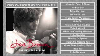 Joe Brown - Mr Blue Sky - Ukulele Album