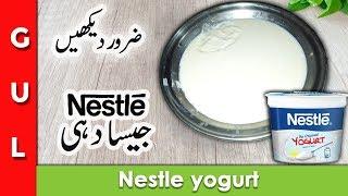 nestle yogurt recipe-dahi banane ka tarika-nestle dahi recipe-gulkitchen