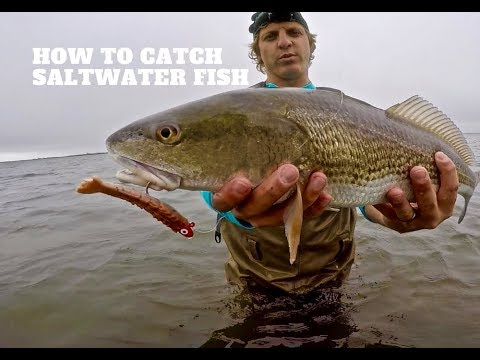SALTWATER Lure Fishing 101 | Beginners Guide MADE EASY to Catch SALTWATER FISH with lures