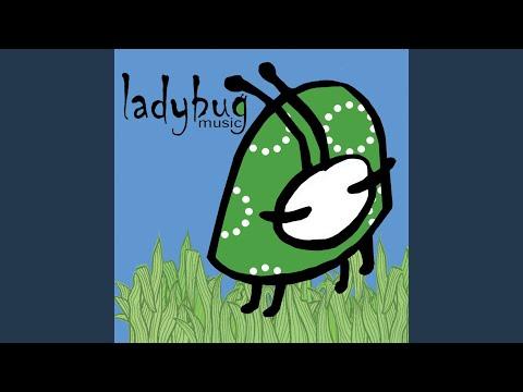 Ladybug Hello