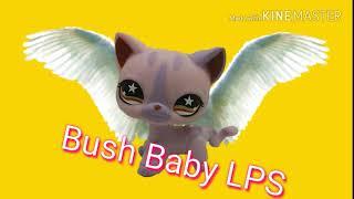 Intro dla Bush Baby LPS