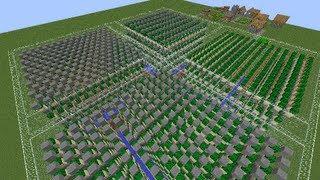 Minecraft Science- Automatic Cactus Farms
