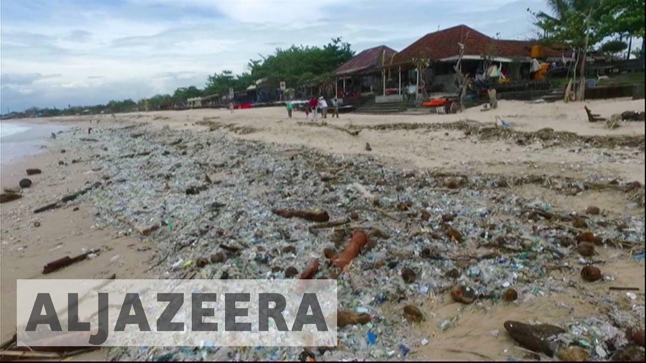 Indonesia: Plastic waste harming marine life