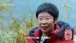 [中国诗词大会]铁锁沉沉截碧江 蒙曼身临其境| CCTV