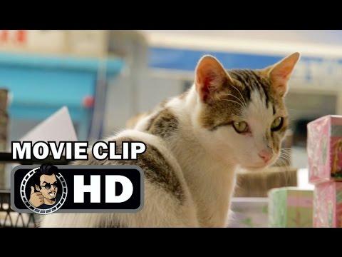 KEDI Movie Clip - Deniz In The Market (2017) Cat Documentary HD