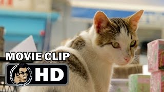 KEDI Movie Clip - Deniz In The Market (2017) Cat Documentary HD