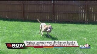 DogVacay company offers affordable dog boardings