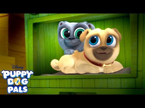 You're My Best Friend | Music Video | Puppy Dog Pals | Disney Junior